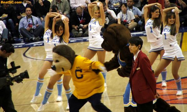 The Cal fans weren't as bad as Football, except for one screaming lunatic.  Also, it appeared that their Mascot rudely tried to upstage the Bruin Dance Team.